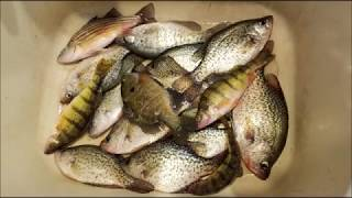 Lake Delton Ice Fishing Report Jan 14 2018