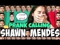 download CALLING SHAWN MENDES