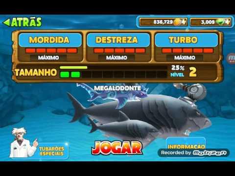 Como ter dinheiro infito e os tubarões especiais em hungry shark