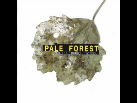 Pale Forest - Transformation Hymn