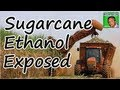 Sugarcane Ethanol Exposed
