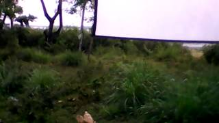 WN Film
