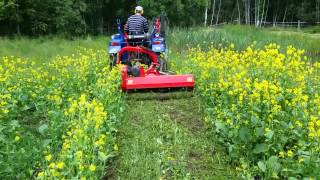 Kill weeds with a flail mower