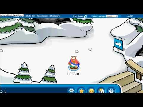 club penguin password box