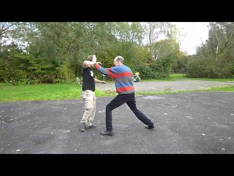 Yang taiji (tai chi) partner form (san shou) 88 movements 12-10-2011.mpg Image 1