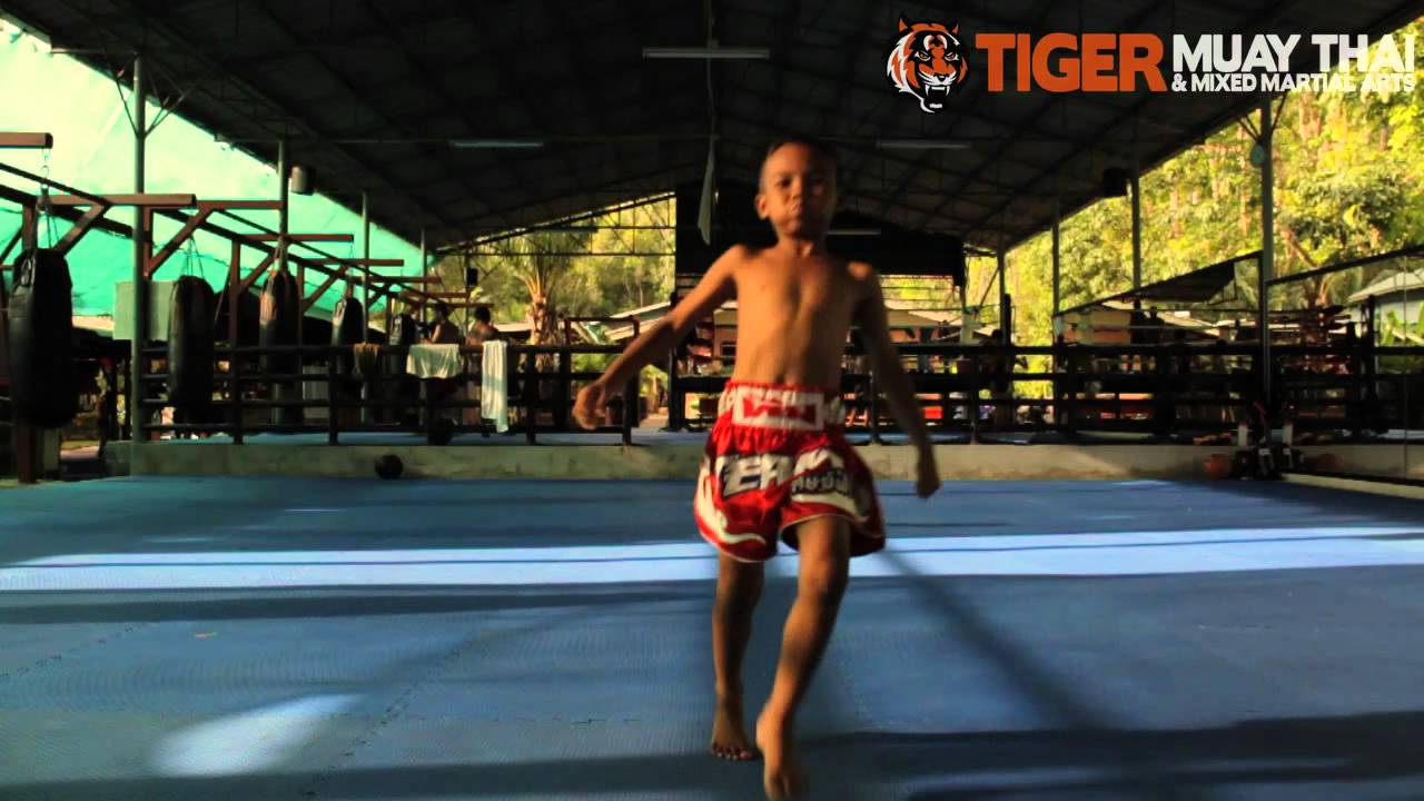 Thai Training Camps Thai Mma Training Camp