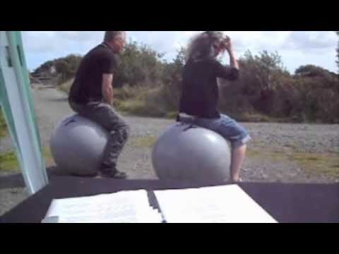 Space Hopper 2010: Travel Scheme