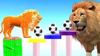 Learn Colourful Surprise Eggs Baby Lion Funny Learning Video || Nursery Rhymes For Kids Colours
