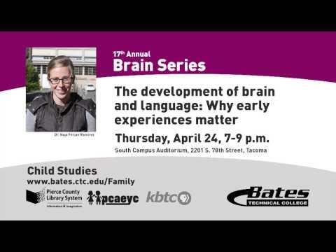 Brain Series PSA 2014