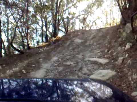 Steep track climb, Mothar Mountain State Forest QLD