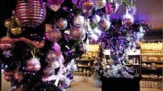 Video Anteprima Paese del Natale 2012 Bardin Garden Center