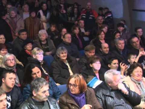 Humanitarni koncert - Celarevo 13.02.2015.