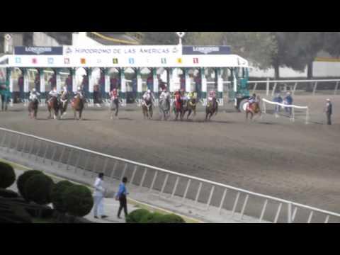 Cuadra 3 Marias Hipódromo de Las Américas