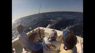 Runoff Sportfishing