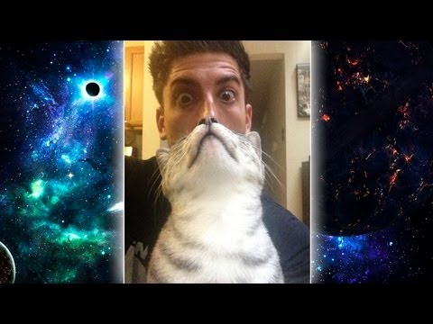 EPIC CAT BEARD!
