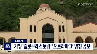 태백시, 신규 조성 테마파크 명칭 공모