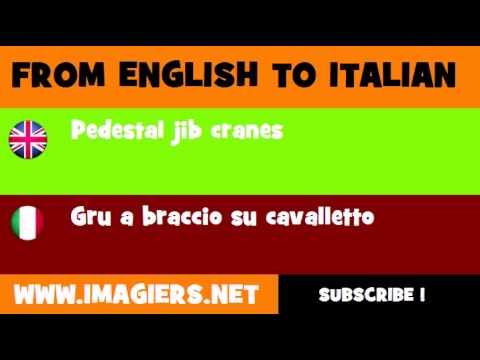 FROM ENGLISH TO ITALIAN = Pedestal jib cranes