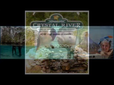 Waterfront ~ Fort Island Trail Properties ~ For Sale ~ Kings Bay, Crystal River FL