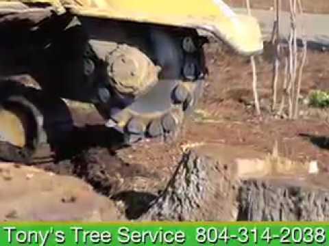 Tony's Tree Service, Palmyra, VA