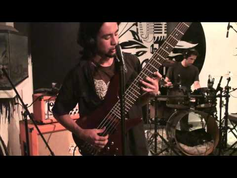 Plasmodium Vivax (Live from Cicuta Records)