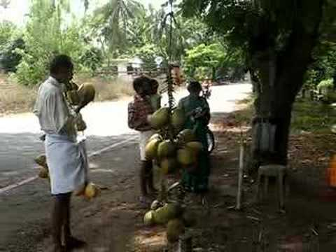Day to day life on the roadside  in Kerala, India !