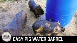 Building an Easy Automatic Pig Watering System