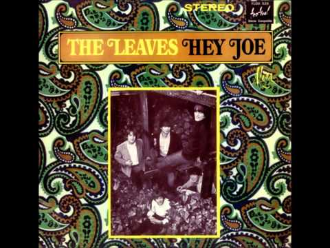 Leaves - Hey Joe