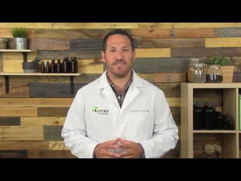 Fish Oil and Omega-3 Health Benefits - Rundown with Dr. Jeremy Wolf : Ask The ND