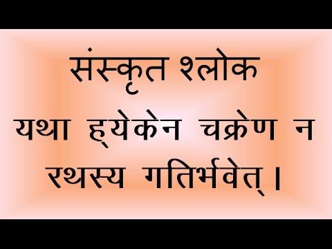 parrot essay in sanskrit