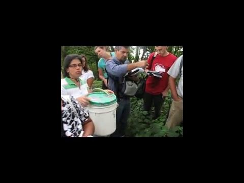 Forestería Análoga: Producción de microorganismos eficientes de montaña