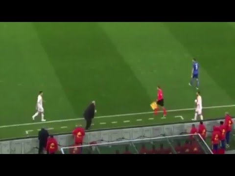 Vicente Del Bosque gets run over by linesman Italy vs Spain 1-1 2016