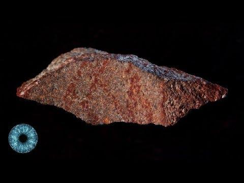 """Höhlen-""""Hashtag"""":  Älteste Zeichnung der Menschheit entdeckt - Clixoom Science & Fiction"""