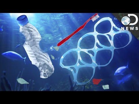 The New Way Microplastics Are Devastating Marine Life