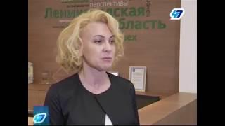 Ленинградская область открывает «Единое окно» для малого бизнеса