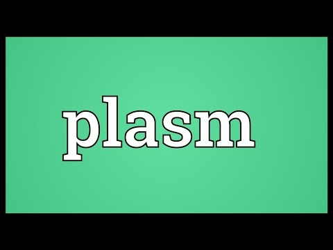 Header of plasm