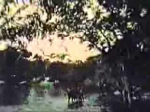 Tarzan (full) ft Ron Ely opening titles