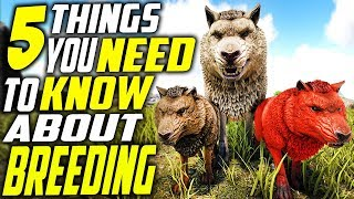 ♦️ TOP 5 THINGS YOU NEED TO KNOW ABOUT BREEDING IN ARK! Ark: Survival Evolved Breeding Tips