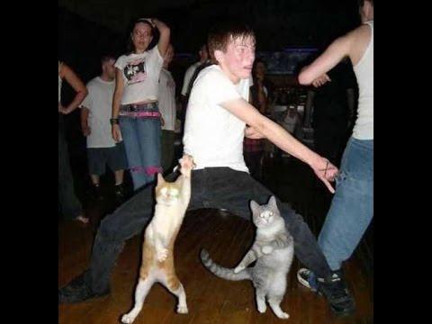 видео приколы танцы: