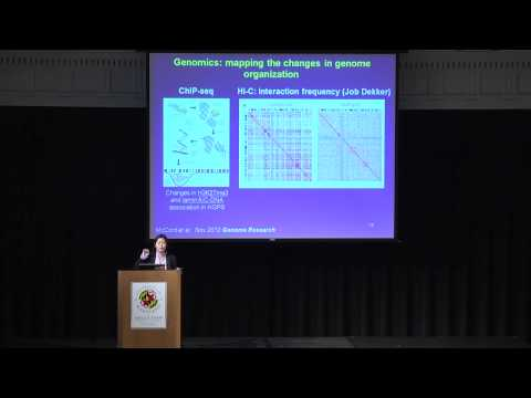 Kan Cao - Molecular Insights on Aging from Hutchinson-Gilford Progeria Syndrome