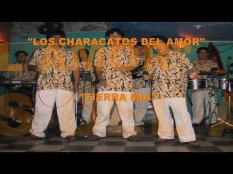 Los Characatos Del Amor - Tierra Mia