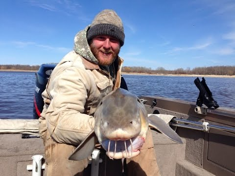 Lake of the woods sturgeon for Rainy river fishing