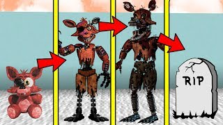 IF MINECRAFT FNAF FOXY  HAD A REALISTIC LIFE SPAN (Be Born a Baby & Die Old)