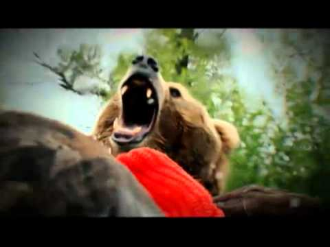 Discovery Channel -  Os Sobreviventes ▬ Music Videos
