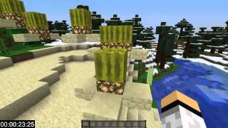 "Minecraft: Speedrun - ""Melon Sprint Parkour"" by GastlyPL"