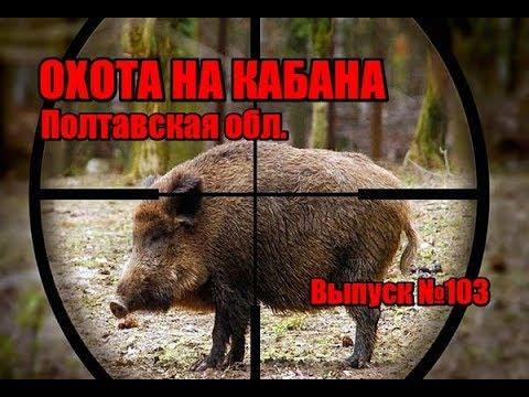 Охота на кабана на Полтавщине, выпуск №103 (UKR)