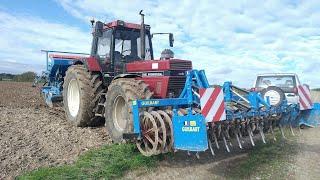 Labour et semi de blé en 1455 XL !!!!!!!