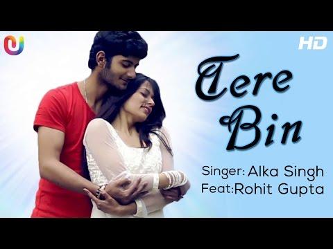 Tere Bin - Full Song | Alka Singh Ft. Rohit Gupta | New Hindi Song 2014