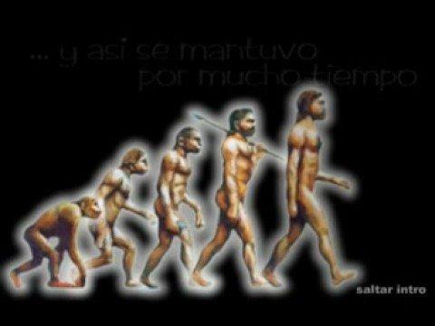 Teoria de Darwin Evolucion Del Hombre Evolución Del Hombre