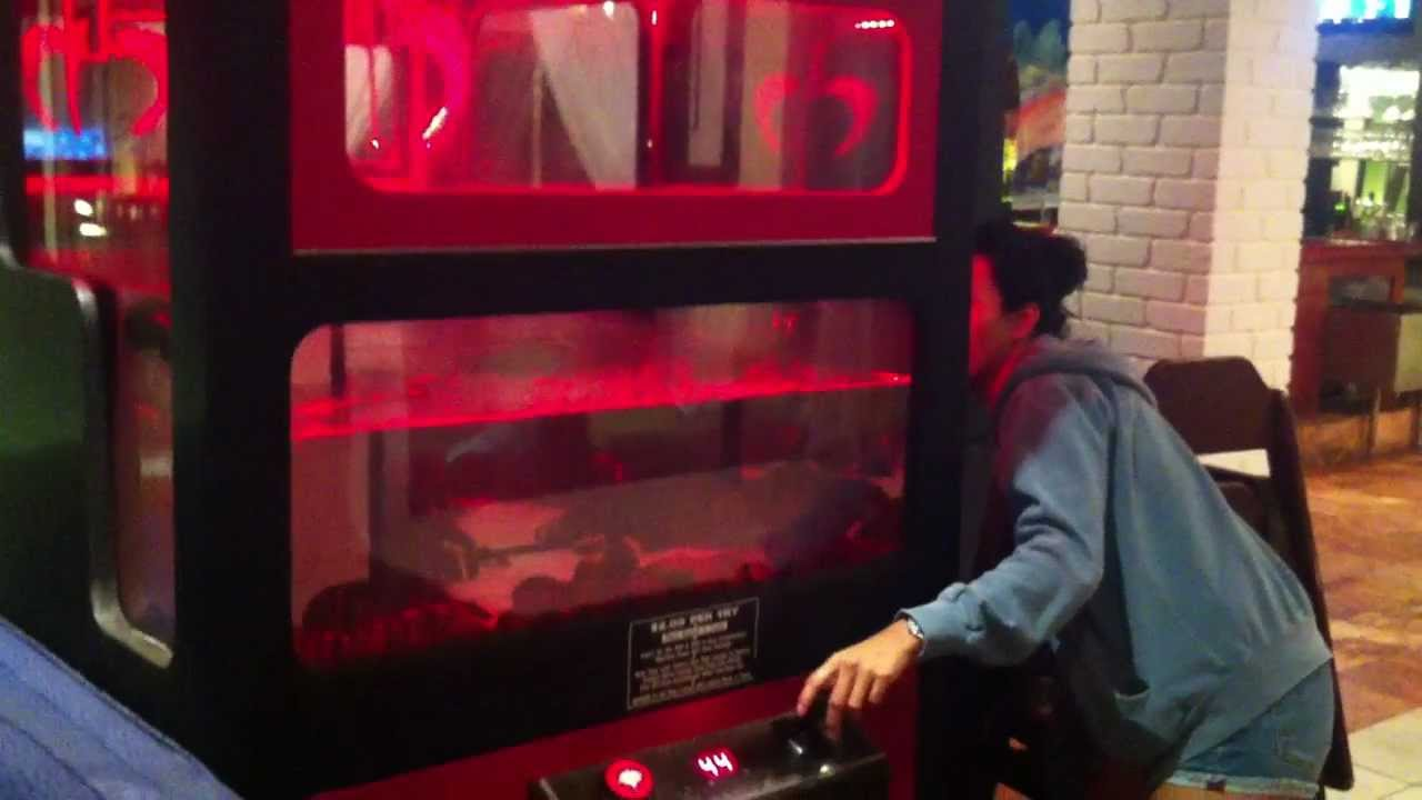 LOBSTER CLAW MACHINE VICTORY!!! - YouTube