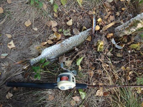 ловля щуки осенью на воблер рудра